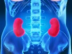 Know When Your Kidneys Are Failing!
