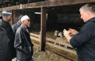 Osun and Sachsen-Anhalt: Lessons from the Osun- Germany Agricultural Cooperation