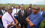 Obaseki inspects Edo State-Saro Maize Farm, urges youths to take advantage of initiative ...Fertilizer plant ready for commissioning