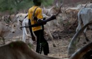 Fulani  Condemns Killing And Beheading (6) Of Its Members Ln Plateau State