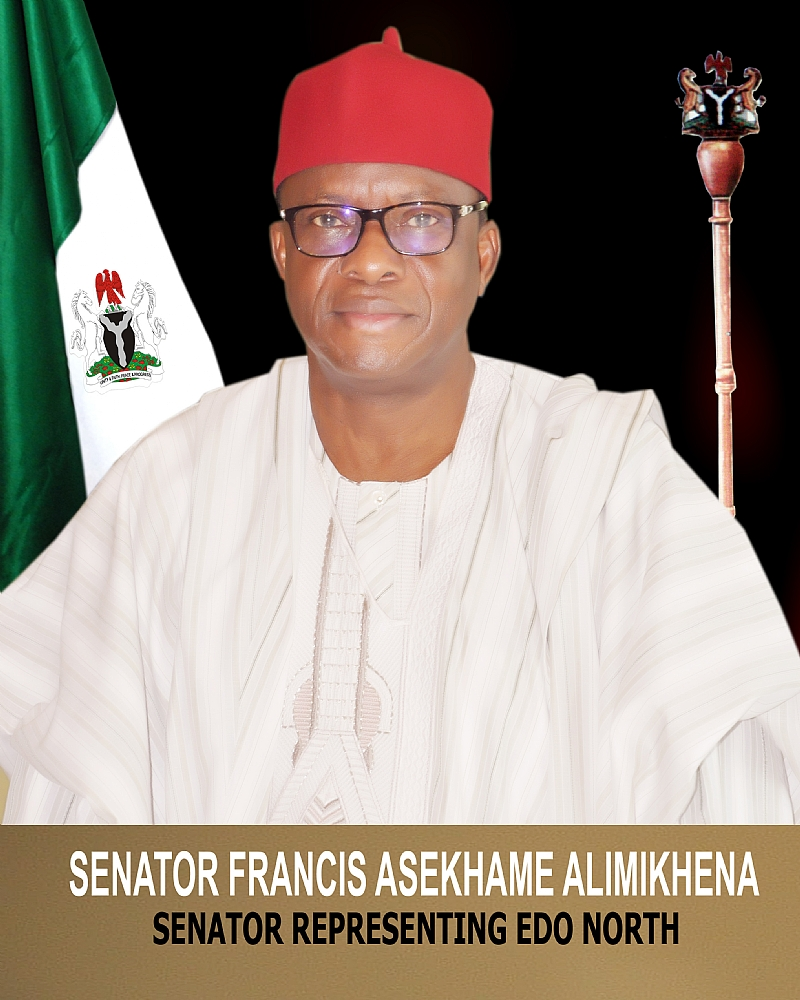 Senator Alimikhena Commisions Projects