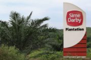 Edo State-Sime Darby Cooperation: Strategic Model For Increase Of Palm Oil Production