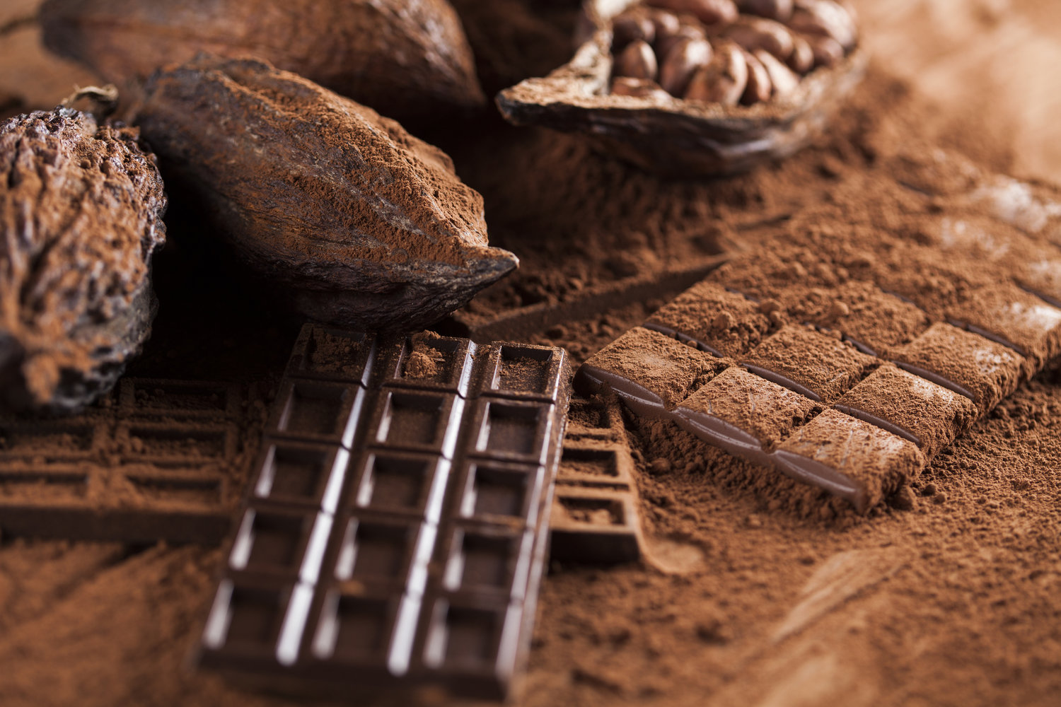 Image result for cocoa in osun state