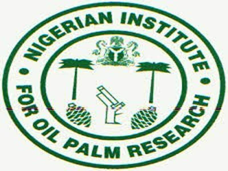 Image result for Nigerian Institute for Oil Palm Research